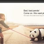 Bad Panda (flickr)
