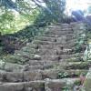 アタック大山 登りも下りも階段トレーニング