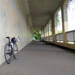 境川サイクリングロードは気持ちよかった