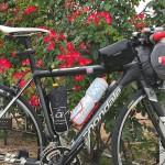 しまなみ海道-4 吉海バラ園までサイクリング